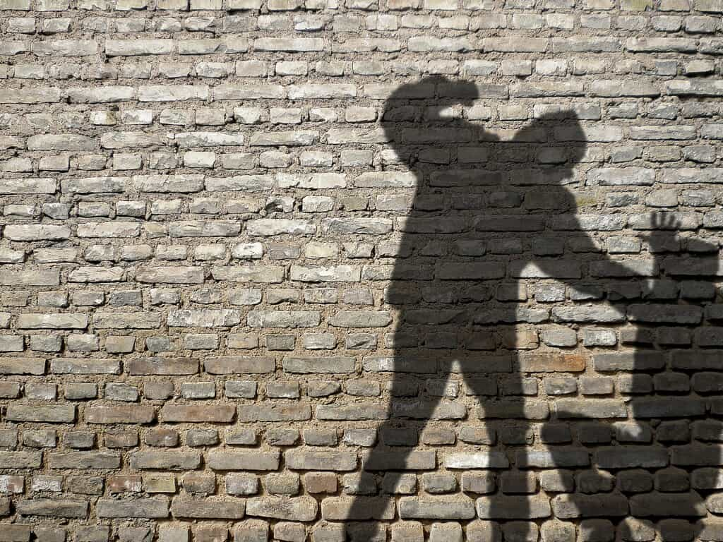 Shadow of Two Individuals Fighting